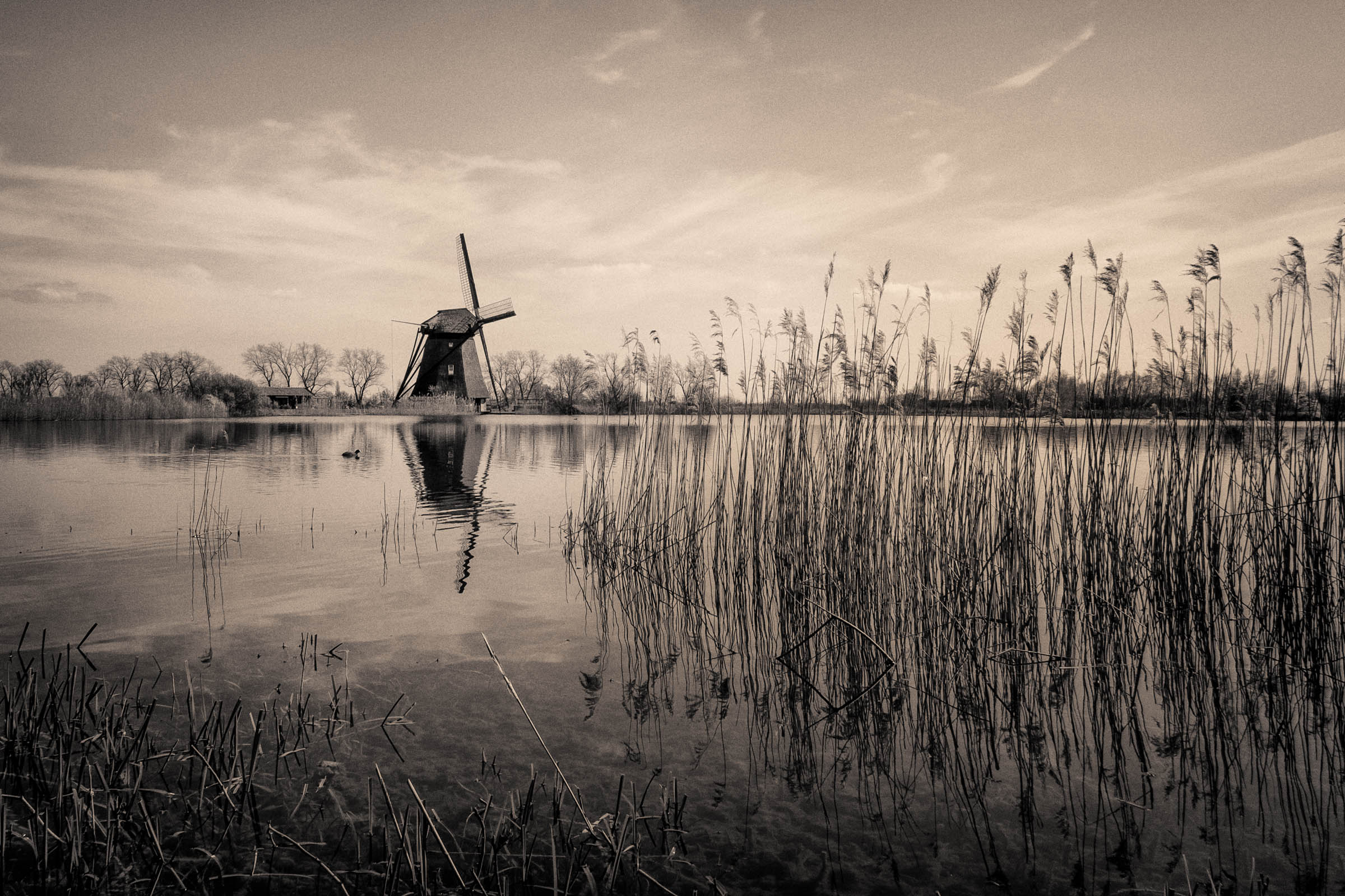Heesselt )NL)