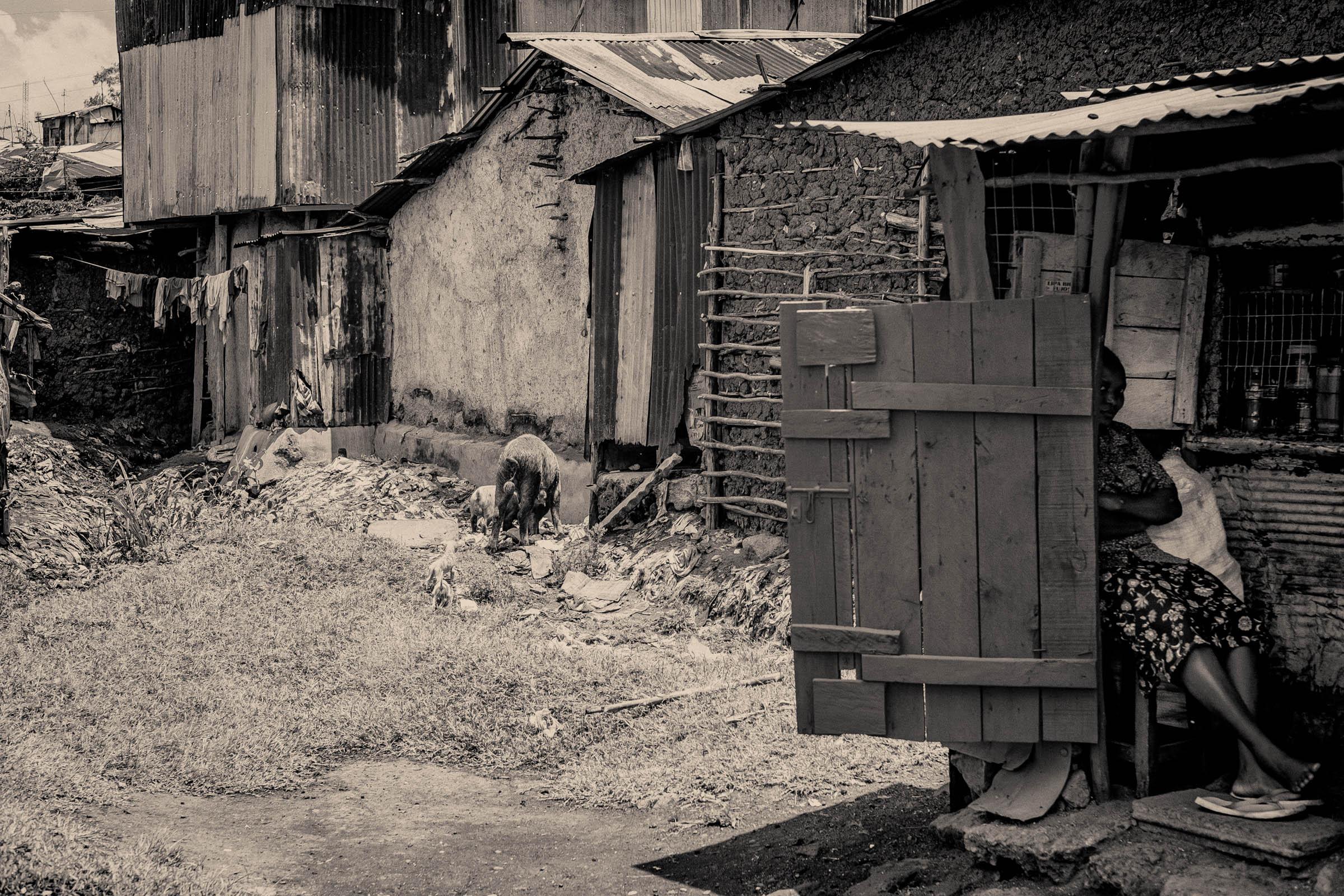 Kenyan shopkeeper (2014)