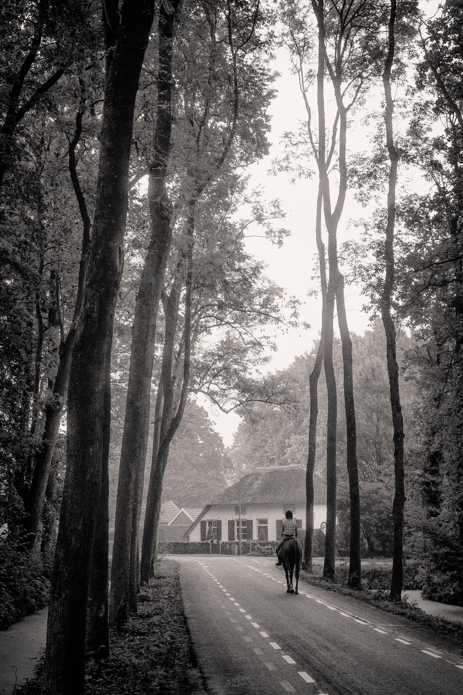 Neerijnen (NL)
